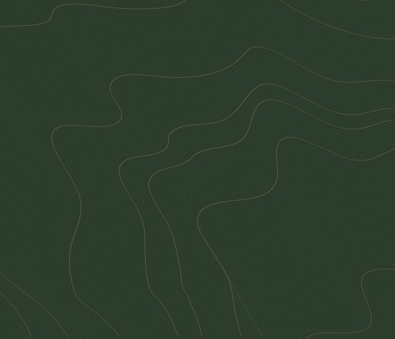 https://nestin.bold-themes.com/classy/wp-content/uploads/sites/5/2020/02/green-background-1280x1100.jpg